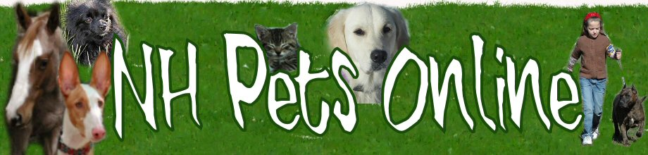 NH Pets Online